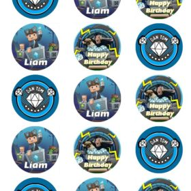 Dan TDM edible cake toppers
